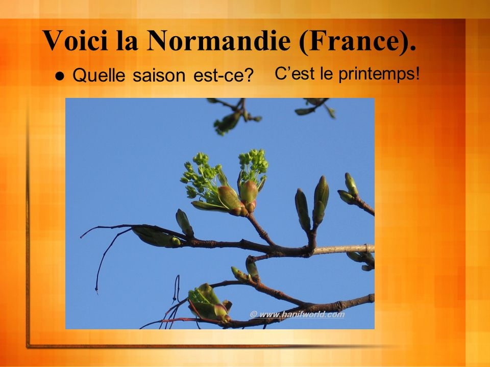 Voici la Normandie (France).