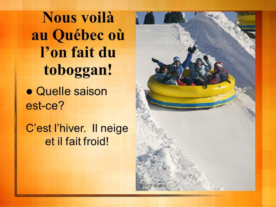 Nous voilà au Québec où l'on fait du toboggan!