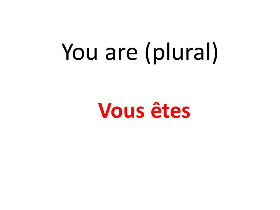 You are (plural) Vous êtes