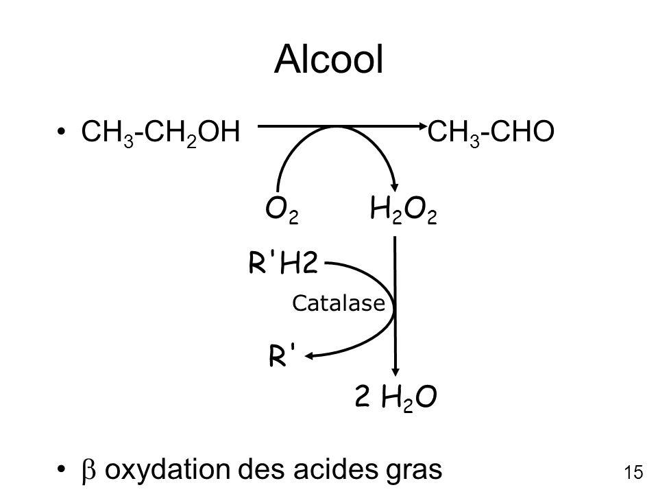 Alcool CH3-CH2OH CH3-CHO  oxydation des acides gras O2 H2O2 2 H2O