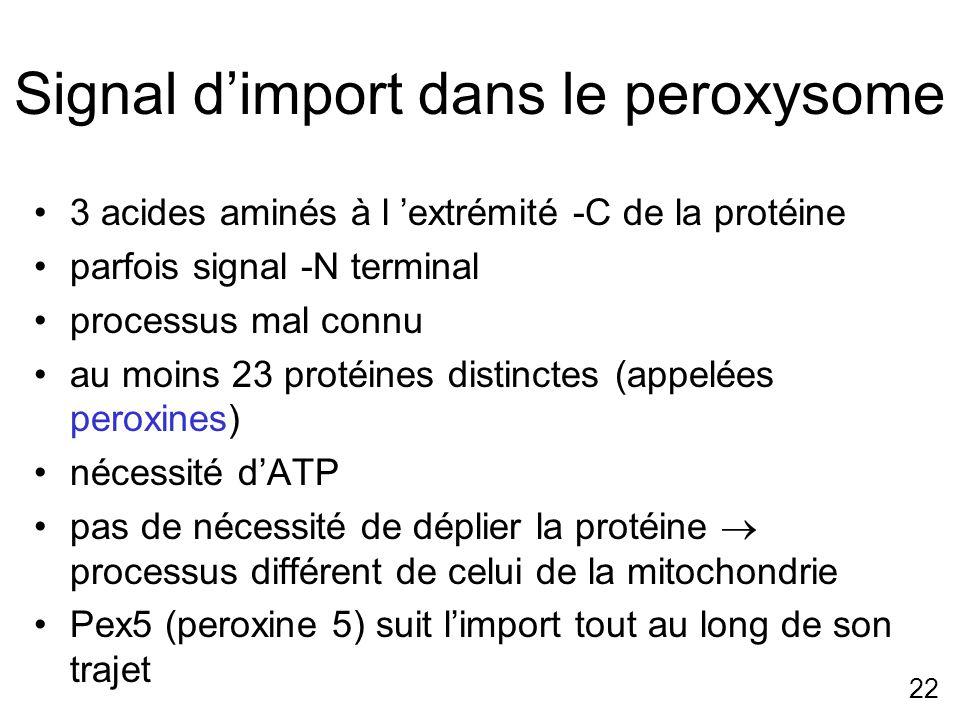 Signal d'import dans le peroxysome