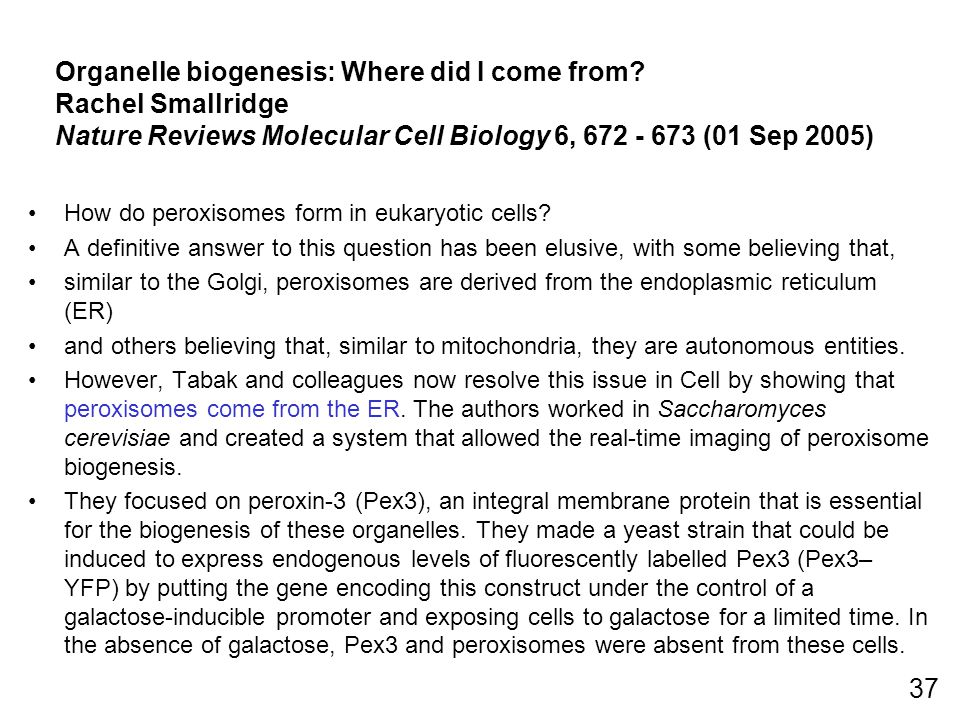 Organelle biogenesis: Where did I come from