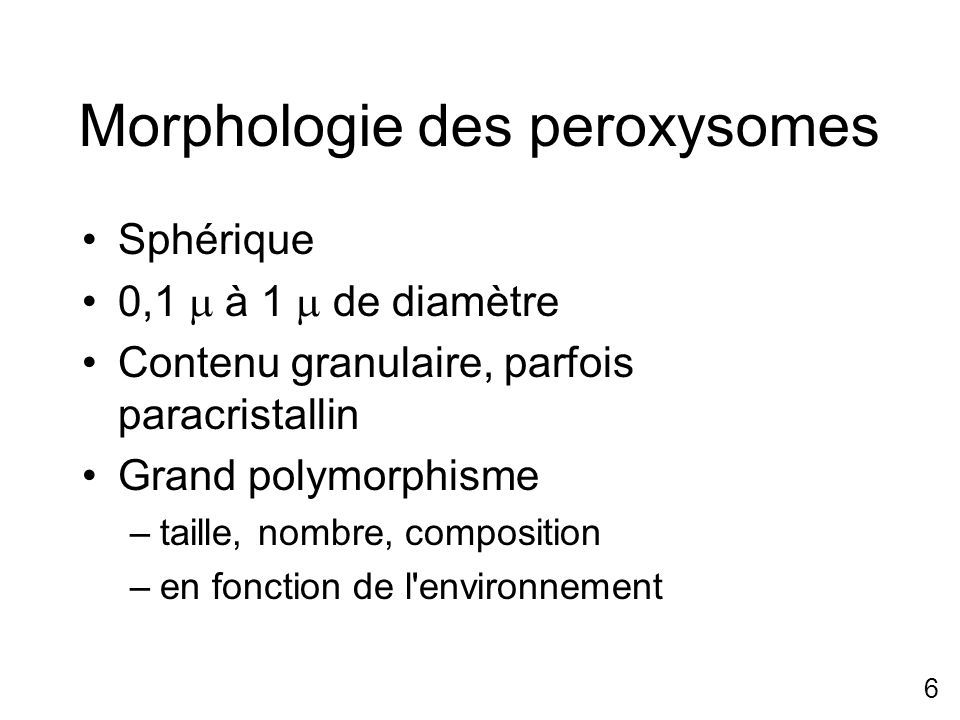 Morphologie des peroxysomes