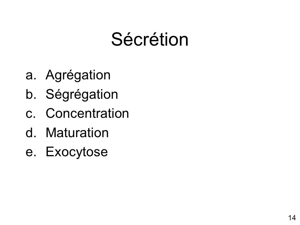 Sécrétion Agrégation Ségrégation Concentration Maturation Exocytose