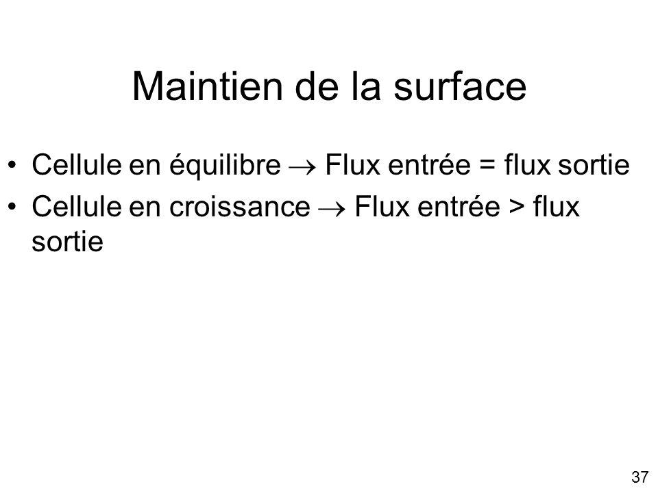Lundi 15 octobre 2007 Maintien de la surface. Cellule en équilibre  Flux entrée = flux sortie. Cellule en croissance  Flux entrée > flux sortie.