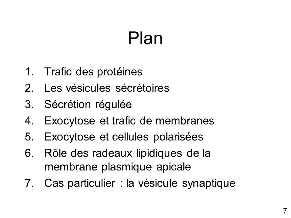 Plan Trafic des protéines Les vésicules sécrétoires Sécrétion régulée