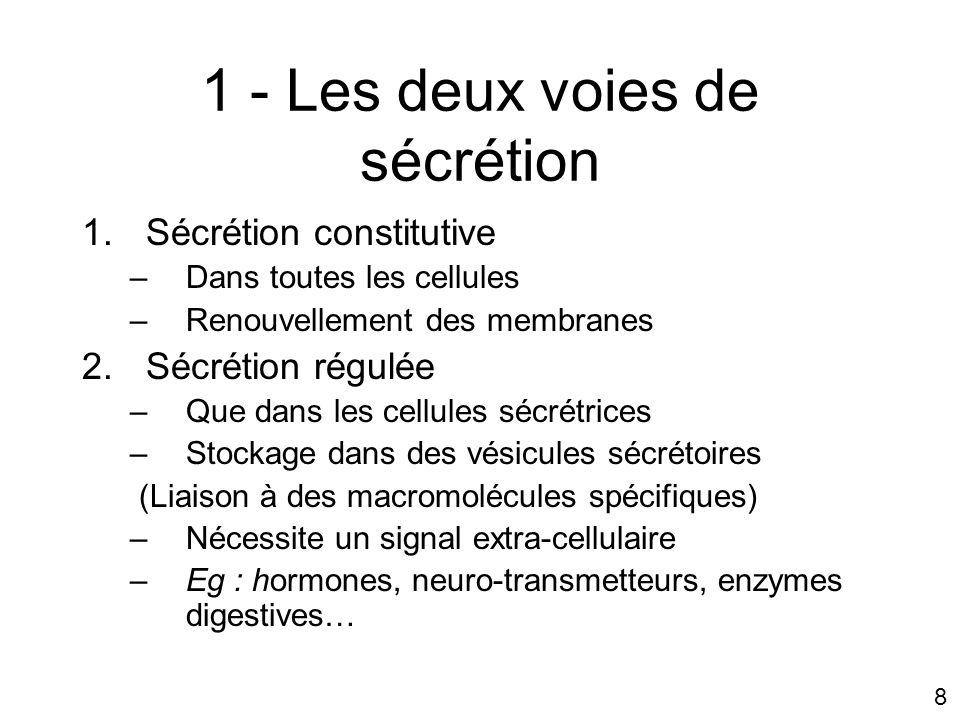 1 - Les deux voies de sécrétion