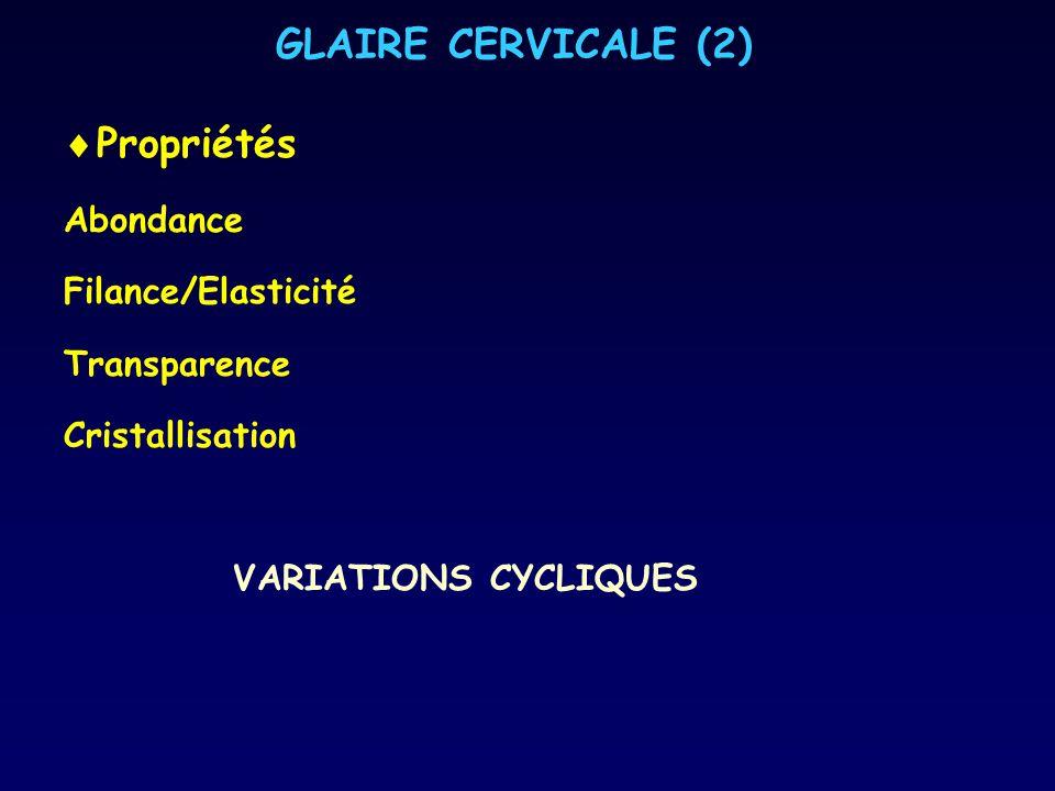 GLAIRE CERVICALE (2) Propriétés Abondance Filance/Elasticité