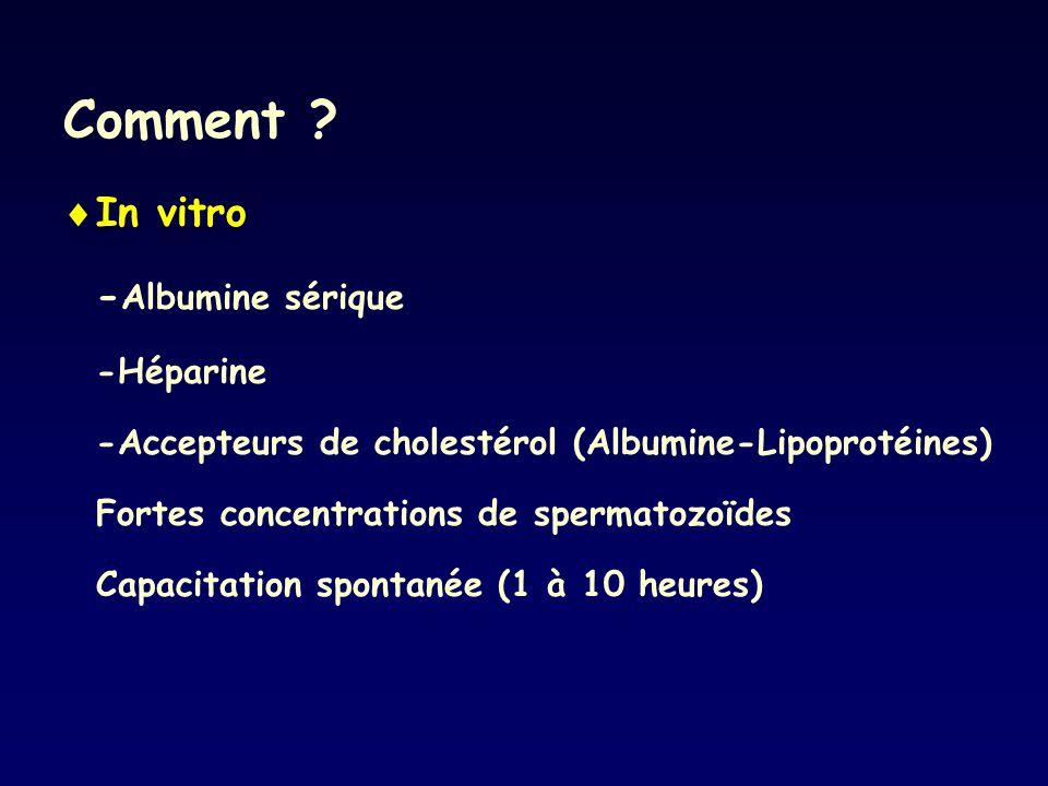 Comment In vitro -Albumine sérique -Héparine