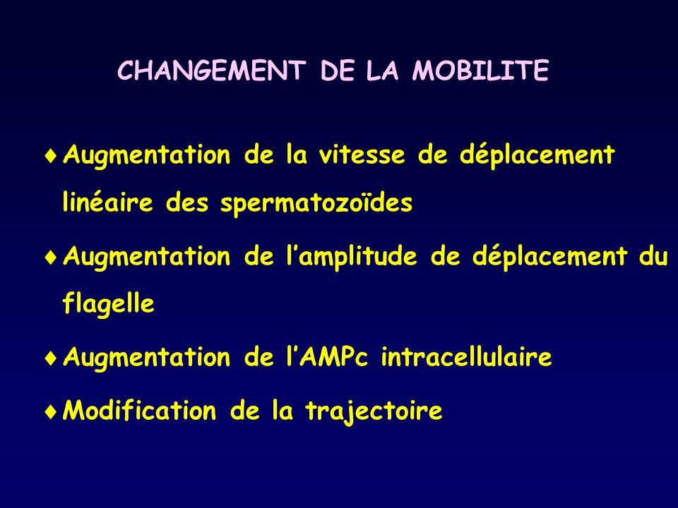 CHANGEMENT DE LA MOBILITE