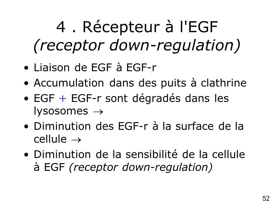4 . Récepteur à l EGF (receptor down-regulation)