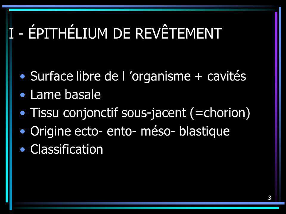 I - ÉPITHÉLIUM DE REVÊTEMENT