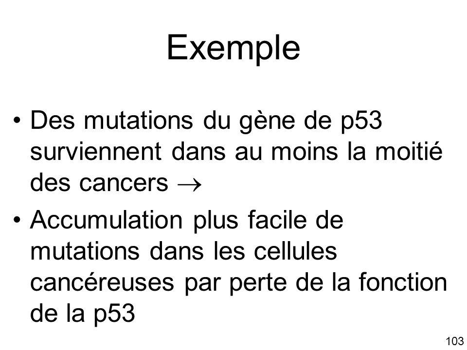 Mardi 23 janvier 2006 Exemple. Des mutations du gène de p53 surviennent dans au moins la moitié des cancers 