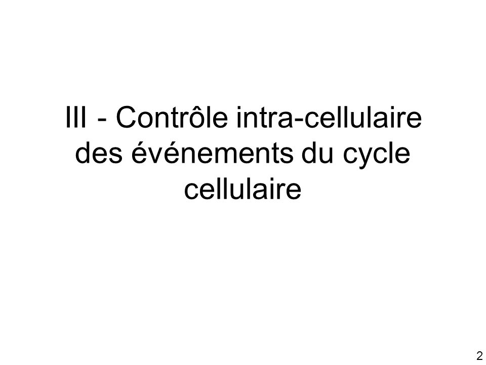 III - Contrôle intra-cellulaire des événements du cycle cellulaire
