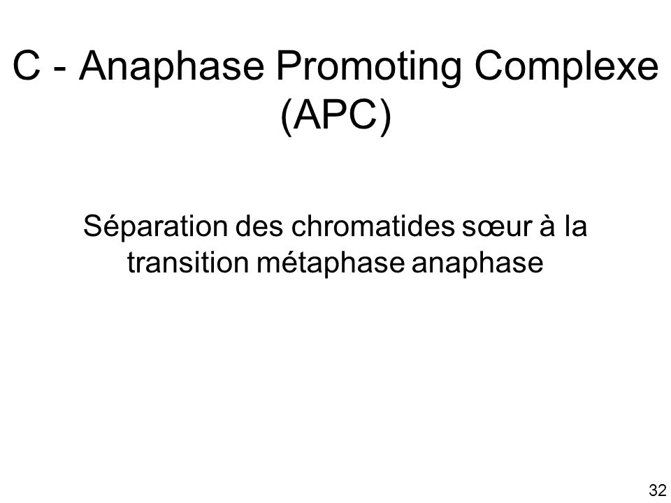C - Anaphase Promoting Complexe (APC)
