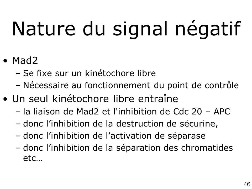 Nature du signal négatif