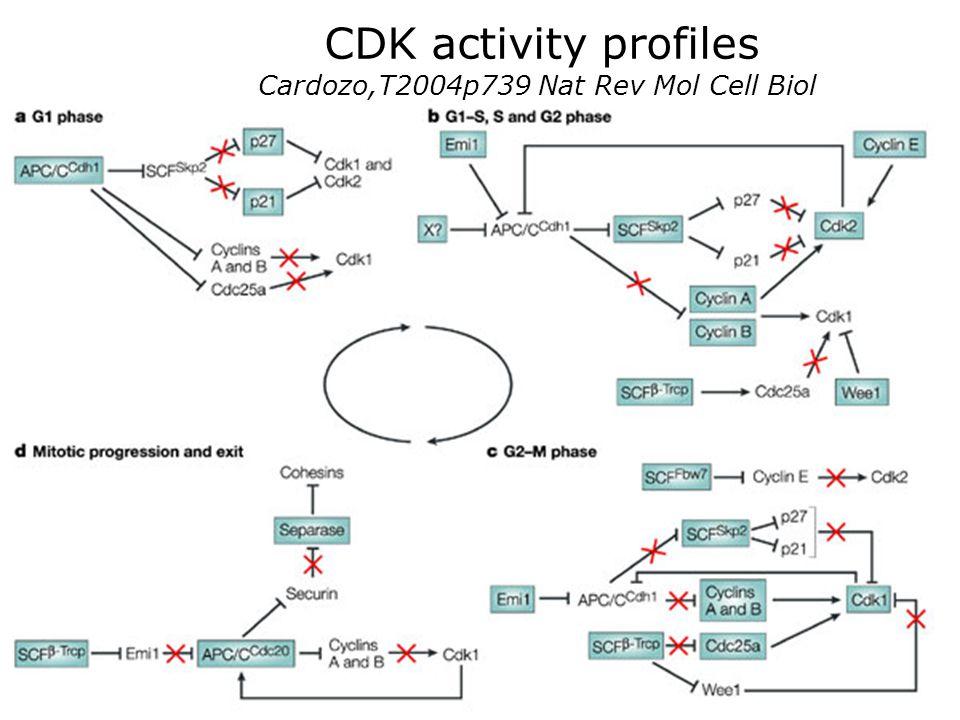 Cardozo,T2004p739 Nat Rev Mol Cell Biol