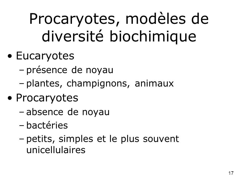 Procaryotes, modèles de diversité biochimique