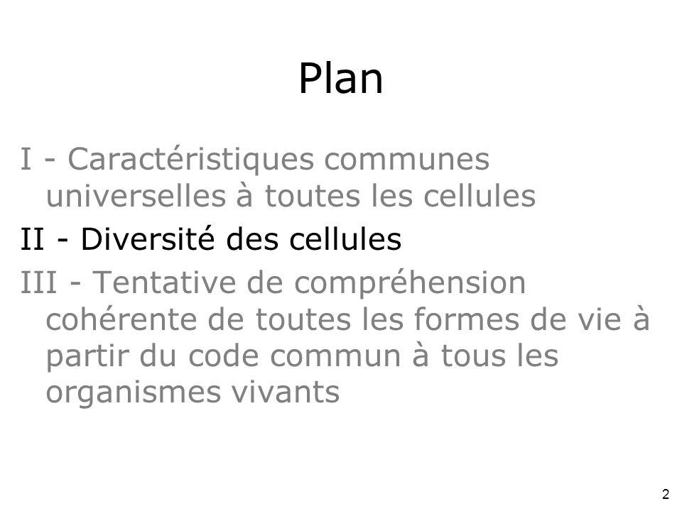 Plan I - Caractéristiques communes universelles à toutes les cellules