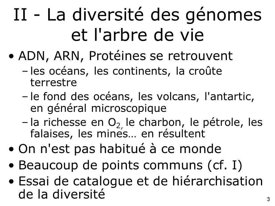 II - La diversité des génomes et l arbre de vie