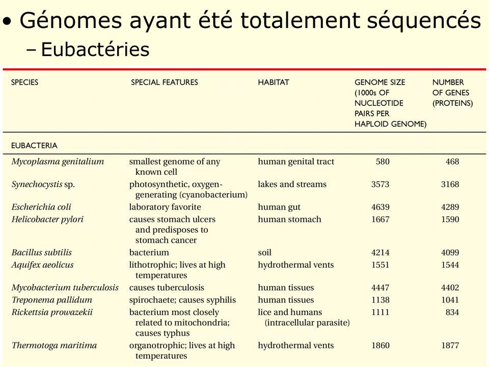 Génomes ayant été totalement séquencés