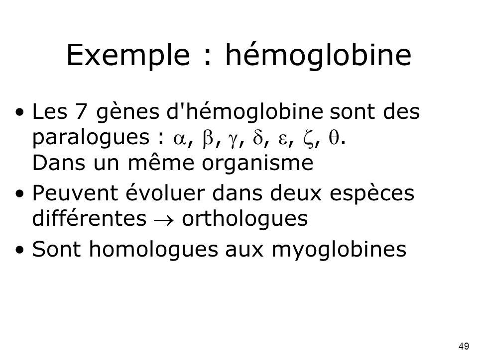 Exemple : hémoglobine Les 7 gènes d hémoglobine sont des paralogues : , , , , , , . Dans un même organisme.