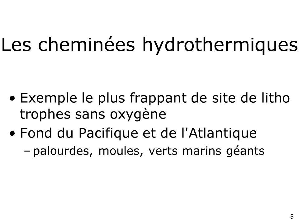 Les cheminées hydrothermiques