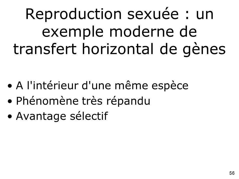 Reproduction sexuée : un exemple moderne de transfert horizontal de gènes