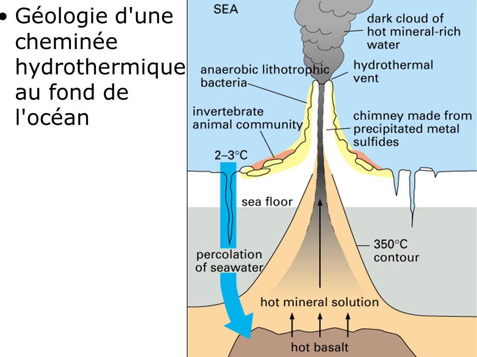 Géologie d une cheminée hydrothermique au fond de l océan
