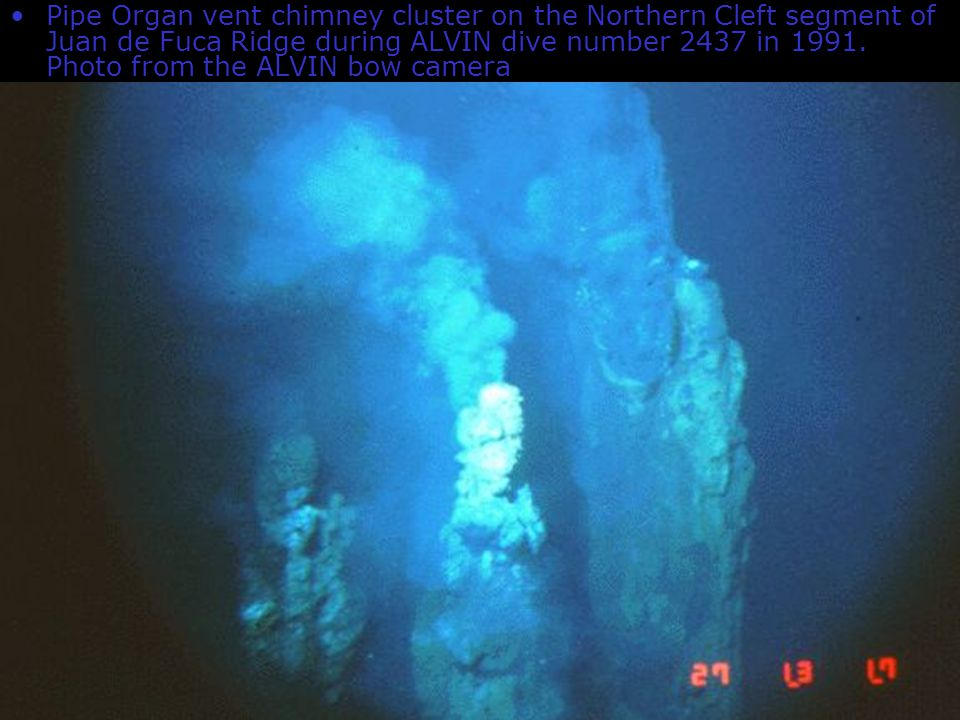 Pipe Organ vent chimney cluster on the Northern Cleft segment of Juan de Fuca Ridge during ALVIN dive number 2437 in 1991. Photo from the ALVIN bow camera