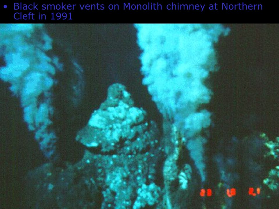 Black smoker vents on Monolith chimney at Northern Cleft in 1991