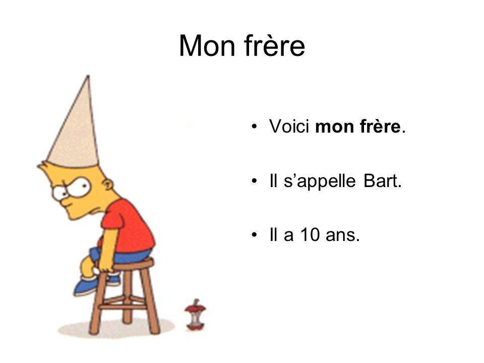 Mon frère Voici mon frère. Il s'appelle Bart. Il a 10 ans.
