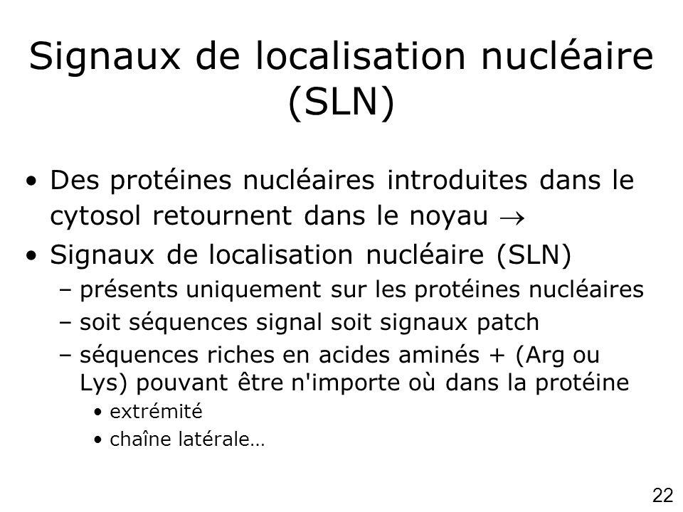 Signaux de localisation nucléaire (SLN)