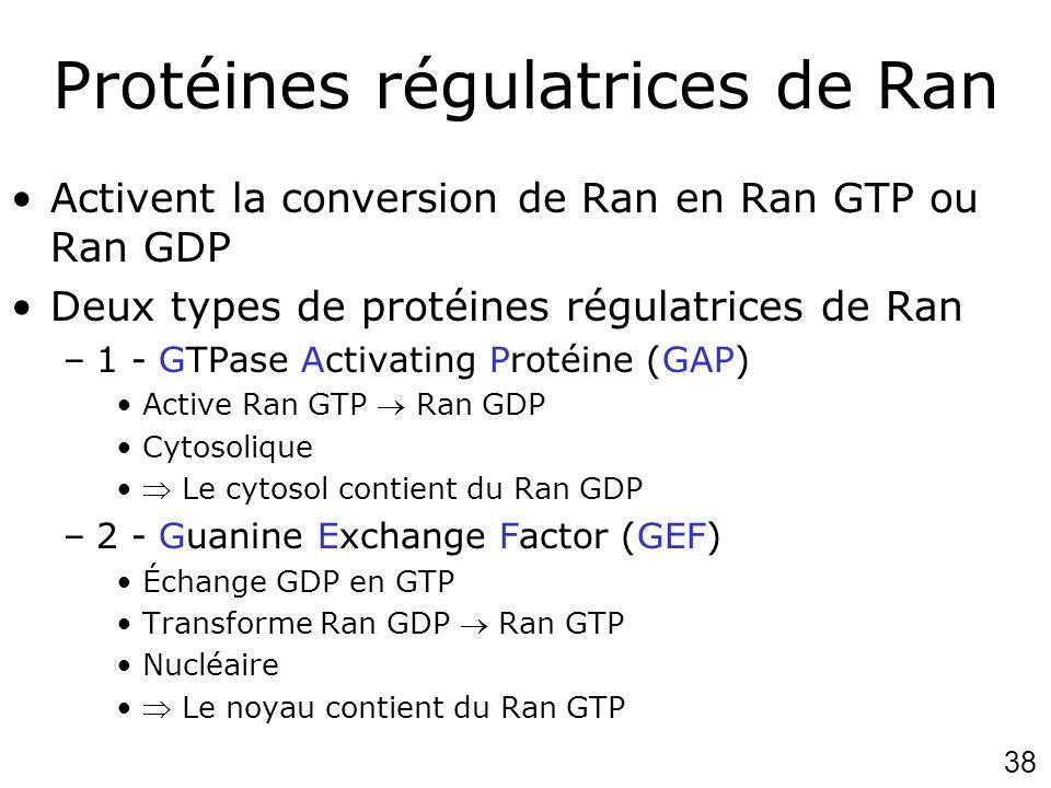 Protéines régulatrices de Ran