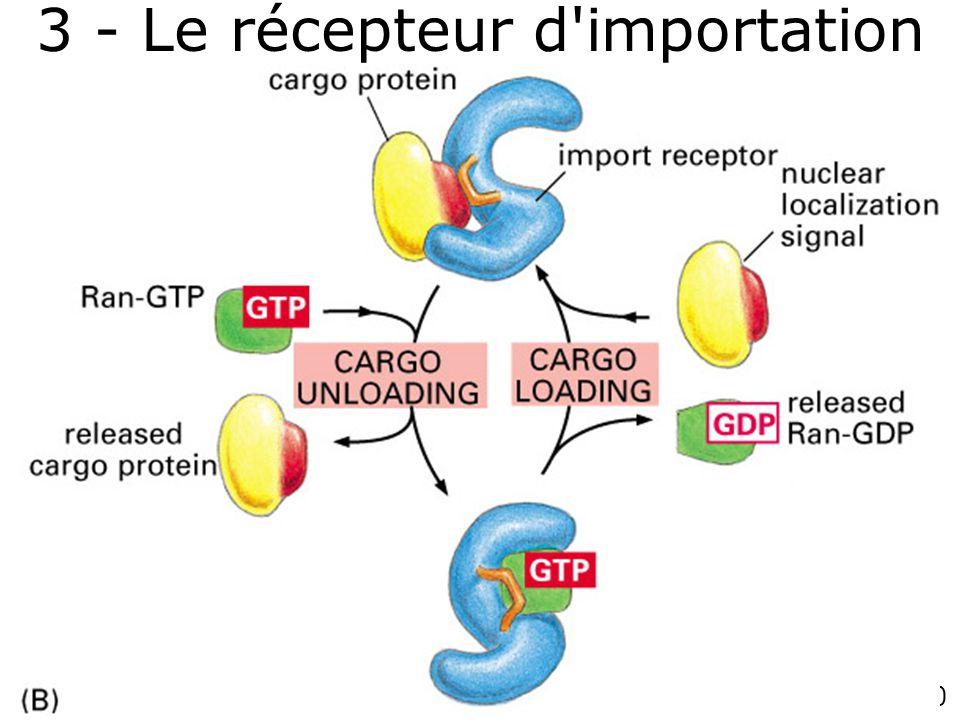 3 - Le récepteur d importation