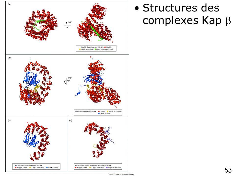 Chook,YM2001p703 (fig3) Structures des complexes Kap 
