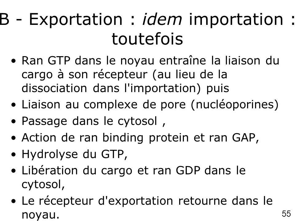 B - Exportation : idem importation : toutefois