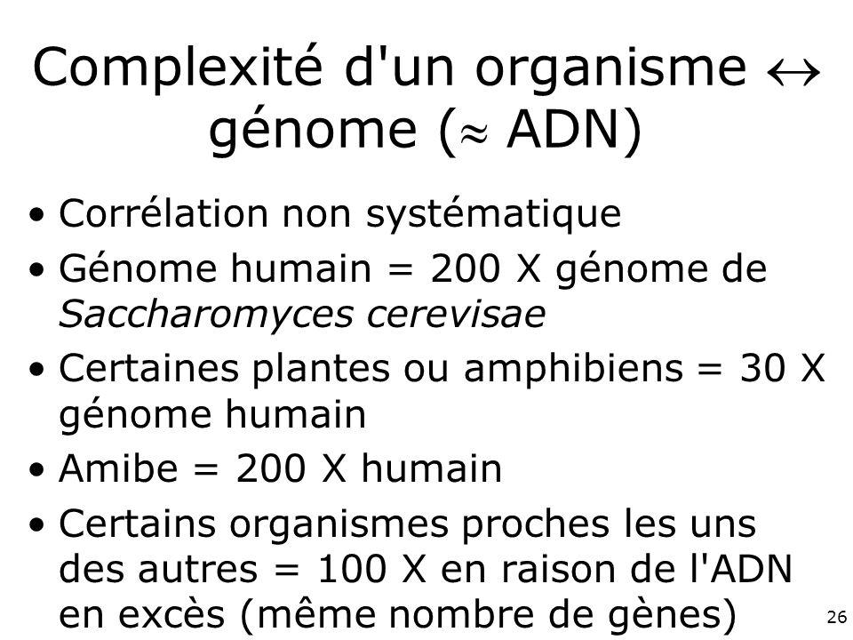 Complexité d un organisme  génome ( ADN)