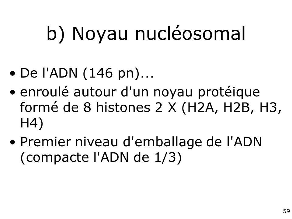 b) Noyau nucléosomal De l ADN (146 pn)...
