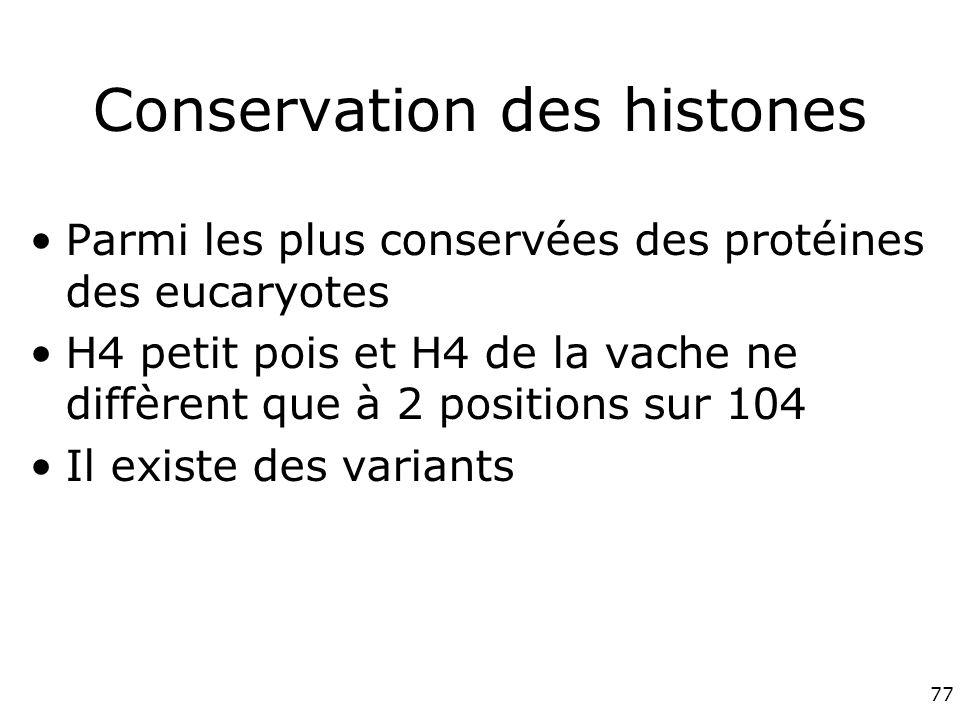 Conservation des histones