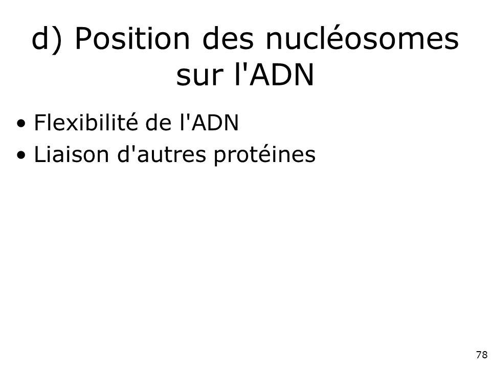 d) Position des nucléosomes sur l ADN