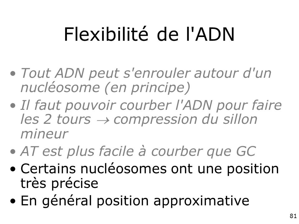 Vendredi 30 novembre 2007 Flexibilité de l ADN. Tout ADN peut s enrouler autour d un nucléosome (en principe)