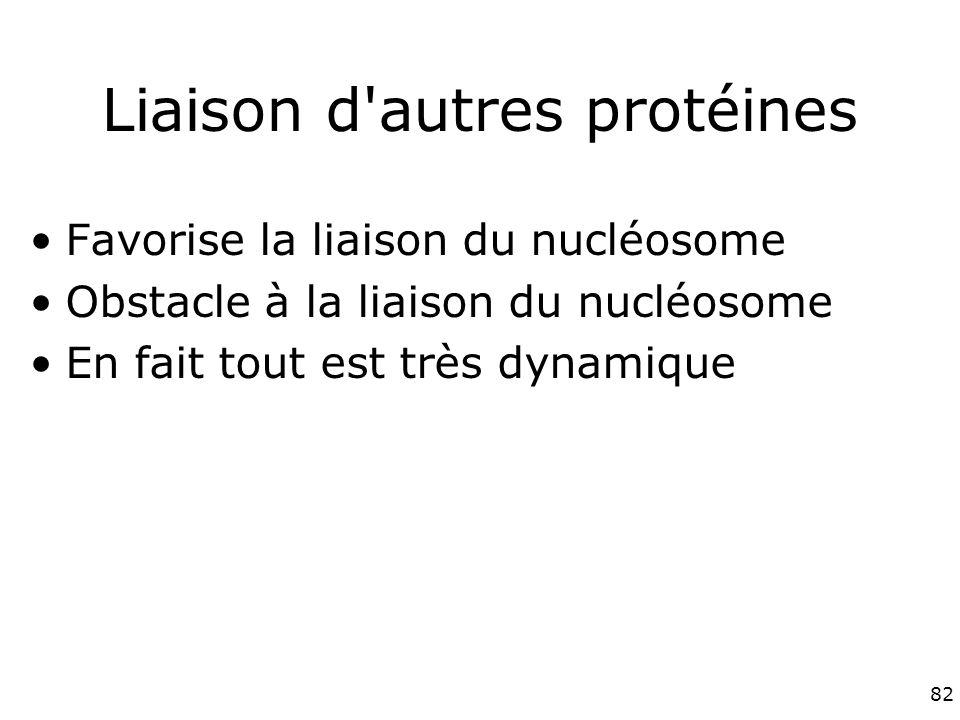 Liaison d autres protéines