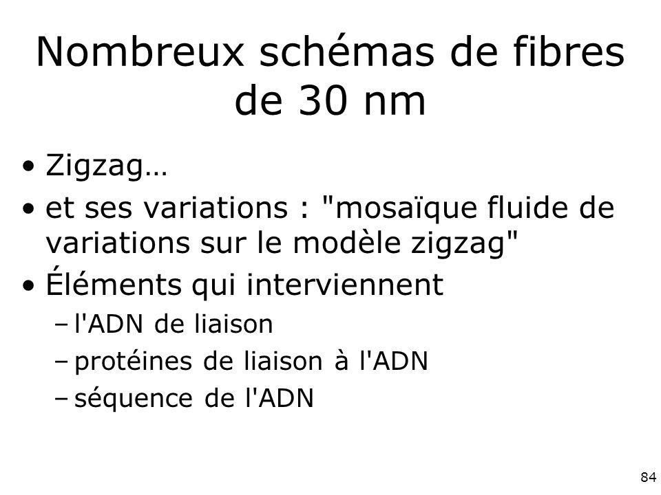 Nombreux schémas de fibres de 30 nm