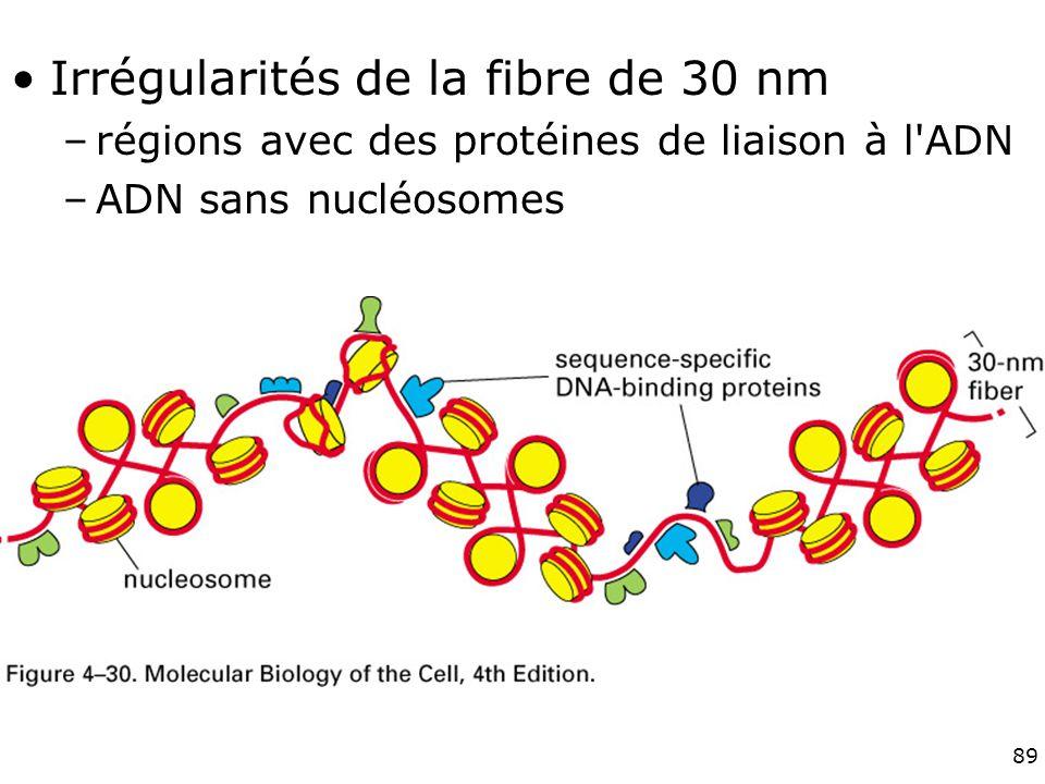 Fig 4-30 Irrégularités de la fibre de 30 nm
