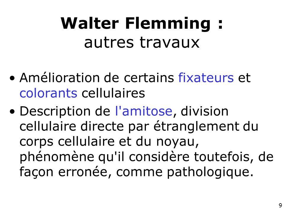 Walter Flemming : autres travaux