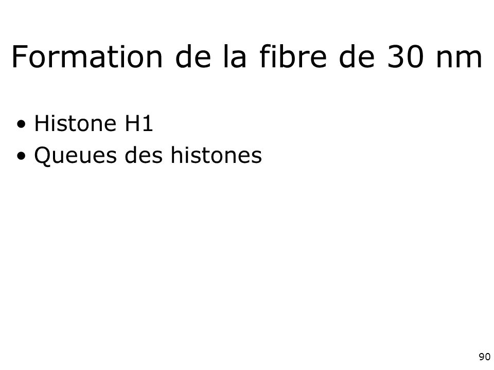 Formation de la fibre de 30 nm