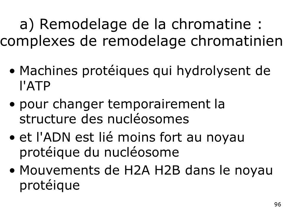 a) Remodelage de la chromatine : complexes de remodelage chromatinien