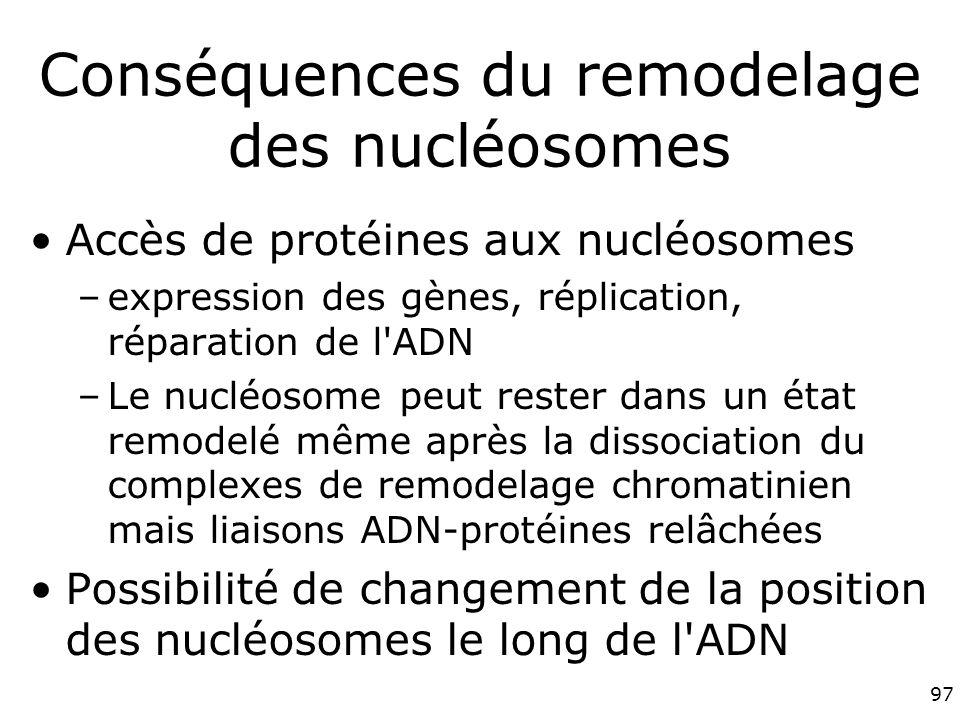 Conséquences du remodelage des nucléosomes