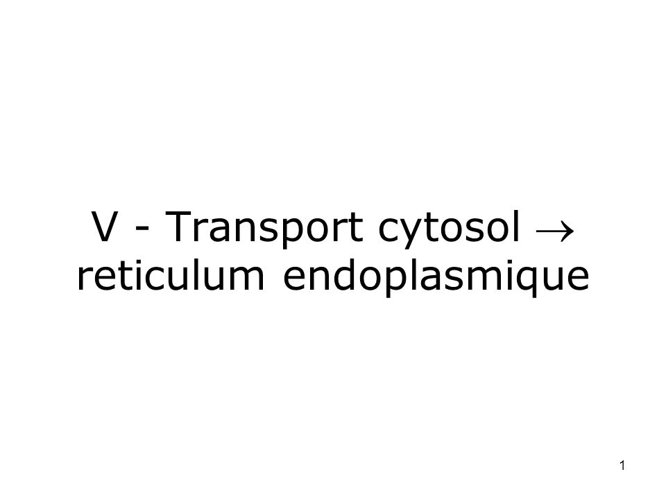 V - Transport cytosol  reticulum endoplasmique